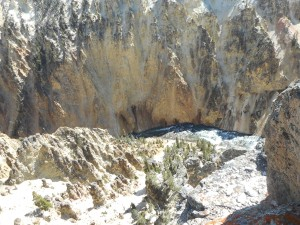 Yellowstone 090